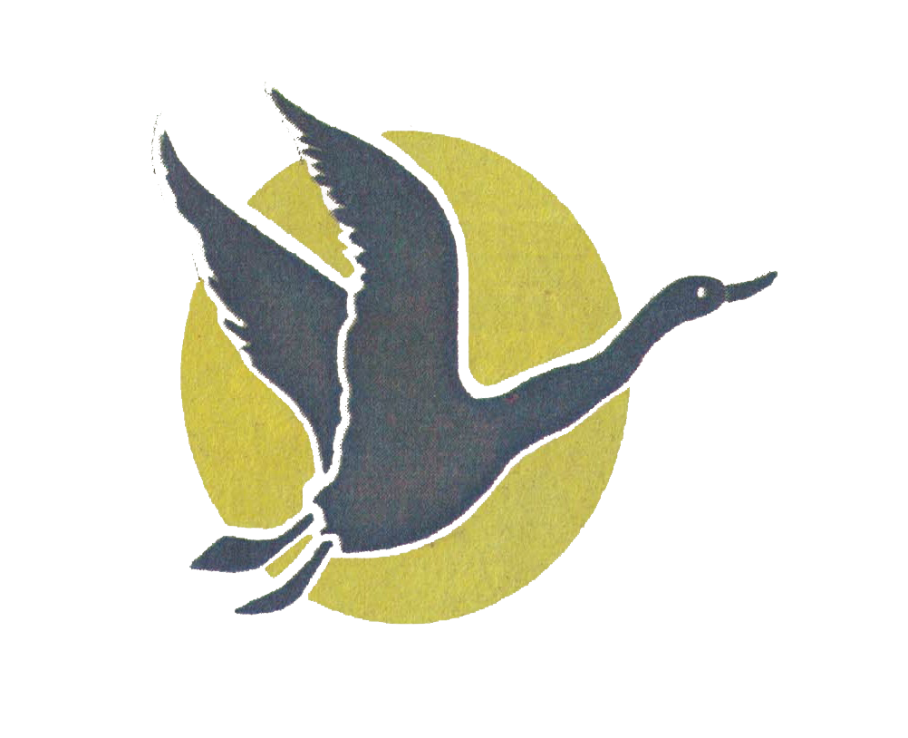 logo hans sarvar